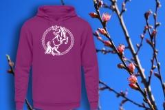 Le poney Shetland de style « tribal »