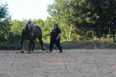 Pas de côté: sur le stage en 2018 j'apprends la position corporelle. Le cheval ne doit rien apprendre: il réagit tout naturellement à ma position corporelle.
